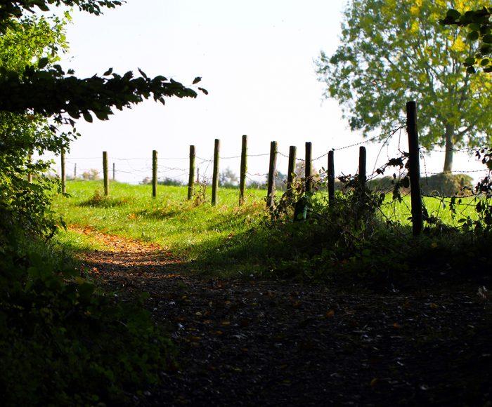 pagina-trail-bunderbos-svmr